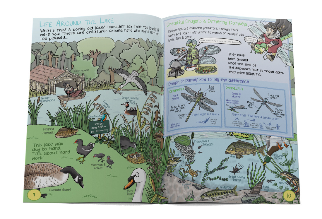 Lake water bird scene from from Gruesomely Grubby Gardens illustrated children's guidebook by Emma Metcalfe
