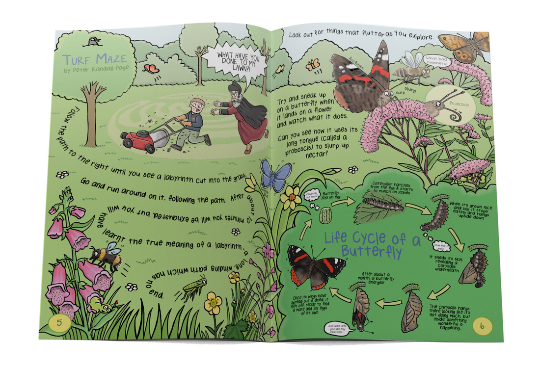 Humorous wildlife illustrations from Gruesomely Grubby Gardens illustrated children's guidebook by Emma Metcalfe