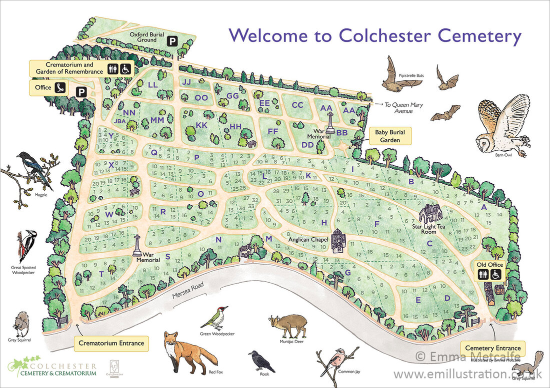 Illustrated cemetery parkland site visitor orientation large format sign board map hand drawn by map illustrator Emma Metcalfe