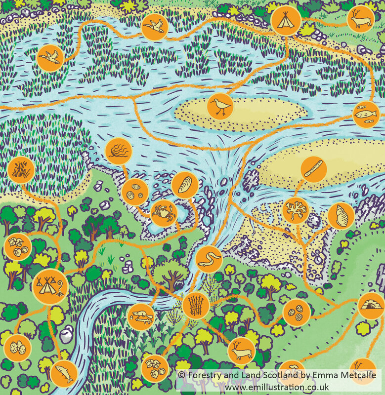 Illustrated simle cartoon estuary map with colouful icons hand drawn by map illustrator Emma Metcalfe