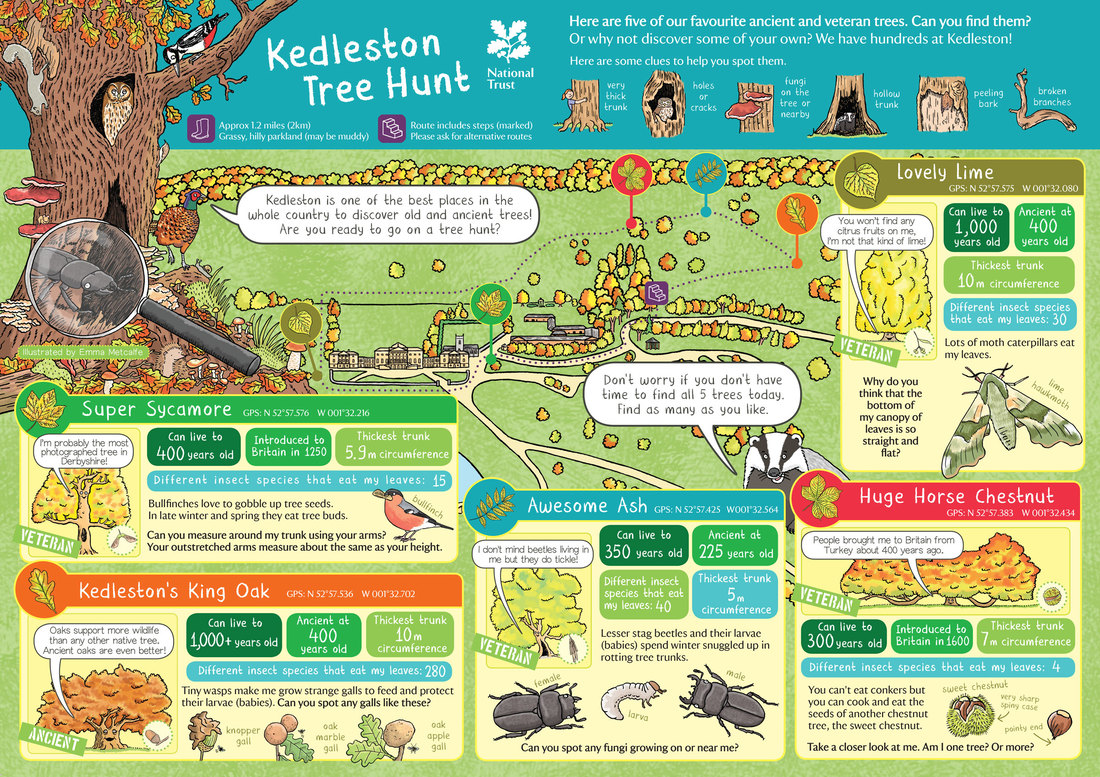 Illustrated children's map of Hughenden Manor gardens and parkland with activities by map illustrator Emma Metcalfe