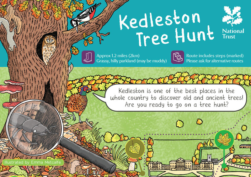 Front cover illustration from Kedleston Tree Hunt nature trail by Emma Metcalfe