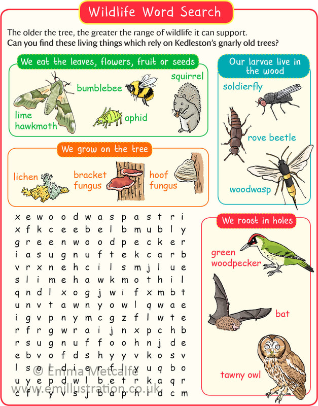 Children's illustrated educational word search animals insects trees by illustrator emma metcalfe